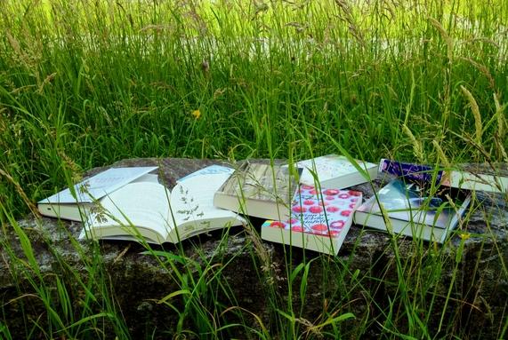 Mehrer Bücher, teils geöffnete, liegen im grünen Gras